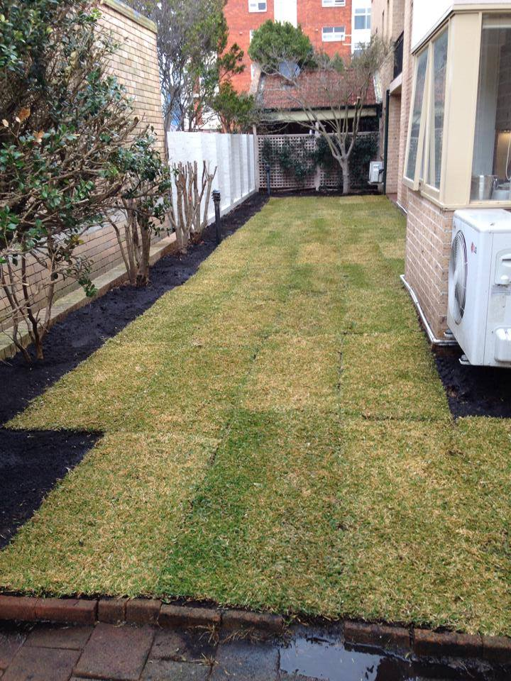 Side Yard Turfing Immediately After Completion